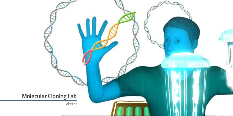 Welcome to the Molecular Cloning lab!